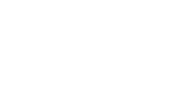 Cooler bag and pouch for professional transport of food and medical products. Keeps product temperature cold, hot or frozen.
