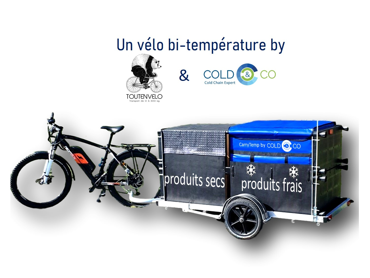 Bicycle delivery of fresh products with a trailer. Removable and self-contained refrigerated cooler container.